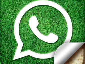 worldleaks whatsapp